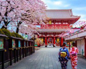 Importancia de las Becas online en Japón 12
