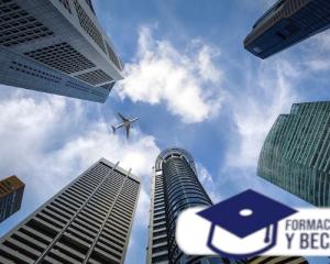 licenciatura en comercialización